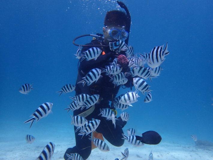 沖繩潛水 青之洞窟 浮潛