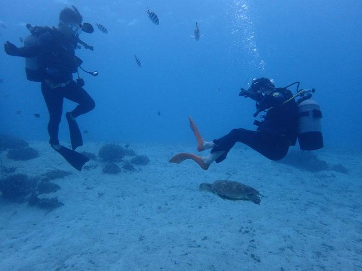 PADI 潛水 證照 藍洞