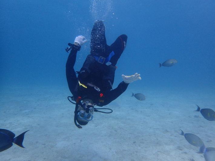沖繩潛水推薦